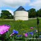 11.-le-pigeonnier-des-benedictes--mairie-de-la-mothe-saint-heray-.jpg