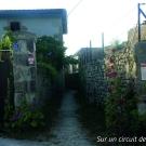 13.-sur-un-circuit-de-decouverte--mairie-de-la-mothe-saint-heray-.jpg