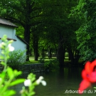 8.-l-arboretum-du-moulin-l-abbe--mairie-de-la-mothe-saint-heray-.jpg