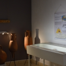 musee-rauranum-hchaudron--4--redim.jpg