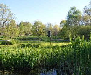 image de Arboretum du chemin de la découverte - Melle