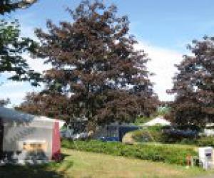 image de Village Vacances du Lambon et Camping du Lambon