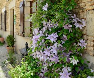 image de La Ferme du Puy d'Anché - chambres d'hôtes