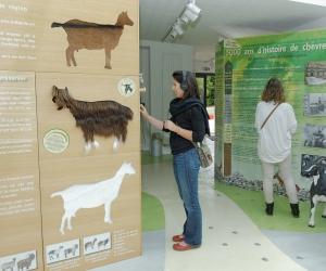 image de Maison des Fromages de Chèvre