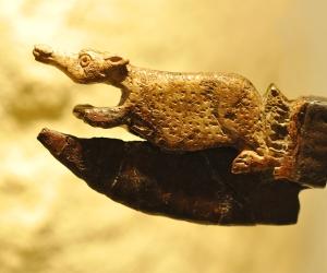 image de Musée de Rauranum