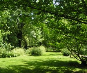 image de Arboretum du Chemin de la Découverte de Melle